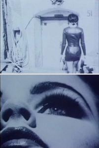 Venus in Furs 2001